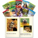 Shell TFK Emergent 1st-Grade Book Set 3 Education Printed Book for Science/Social Studies - English
