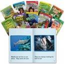 Shell TFK Emergent 1st-Grade 30-Book Set Education Printed Book