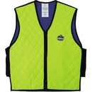 Ergodyne Chill-Its Evaporative Cooling Vest