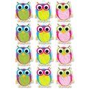 Ashley Scribble Owls Design Dry-erase Magnet