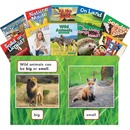 Shell STEM Kindergarten 10-book Set Education Printed Book for Science/Technology/Engineering/Mathematics - English