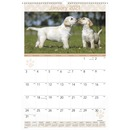 At-A-Glance Puppies Monthly Wall Calendar