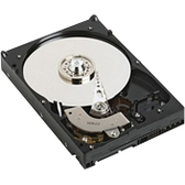 "Dell-IMSourcing 750 GB 3.5"" Internal Hard Drive"