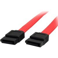StarTech.com 8in SATA Serial ATA Cable - Male SATA - Male SATA - 8 - Red