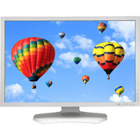 """NEC MultiSync PA302W 75.7 cm (29.8"""") GB-R LED LCD Monitor - 16:10 - 7 ms"""
