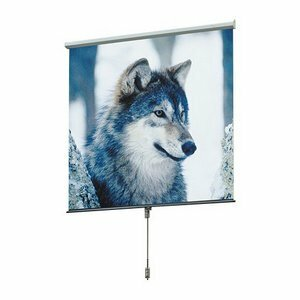 Draper Projector Screens
