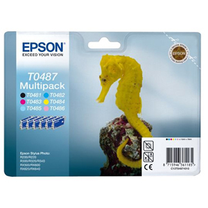 Epson T0487 Ink Cartridge - Black