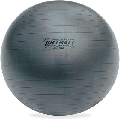 Champion Sports Gray Training/Exercise Ball