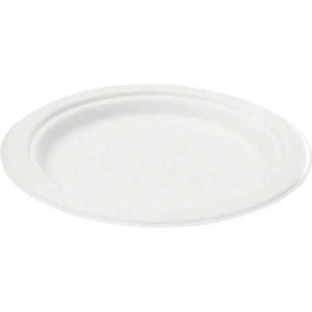 Savannah Bagasse Disposable Plates SVAP001CT