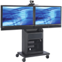 Avteq RPS-800L Display Stand