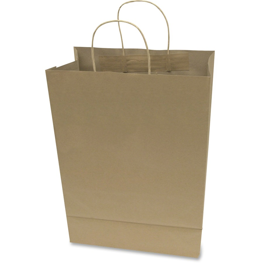 Cosco Premium Large Brown Paper Ping Bags Cos091566