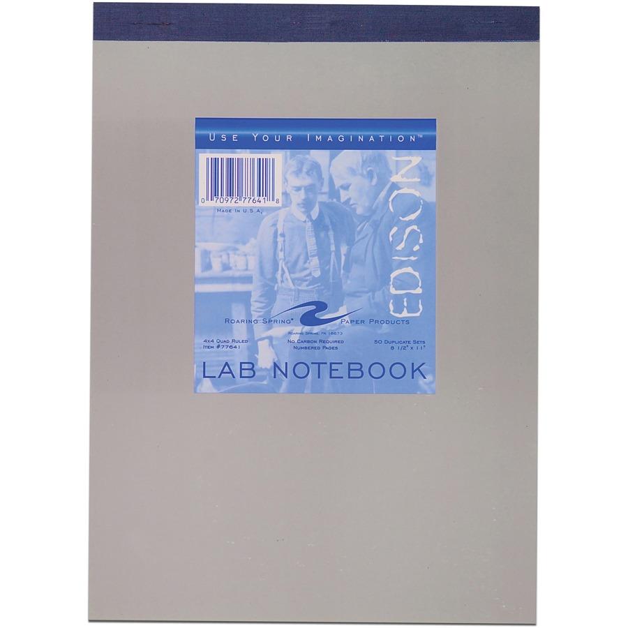 Roaring Spring Lab Notebook