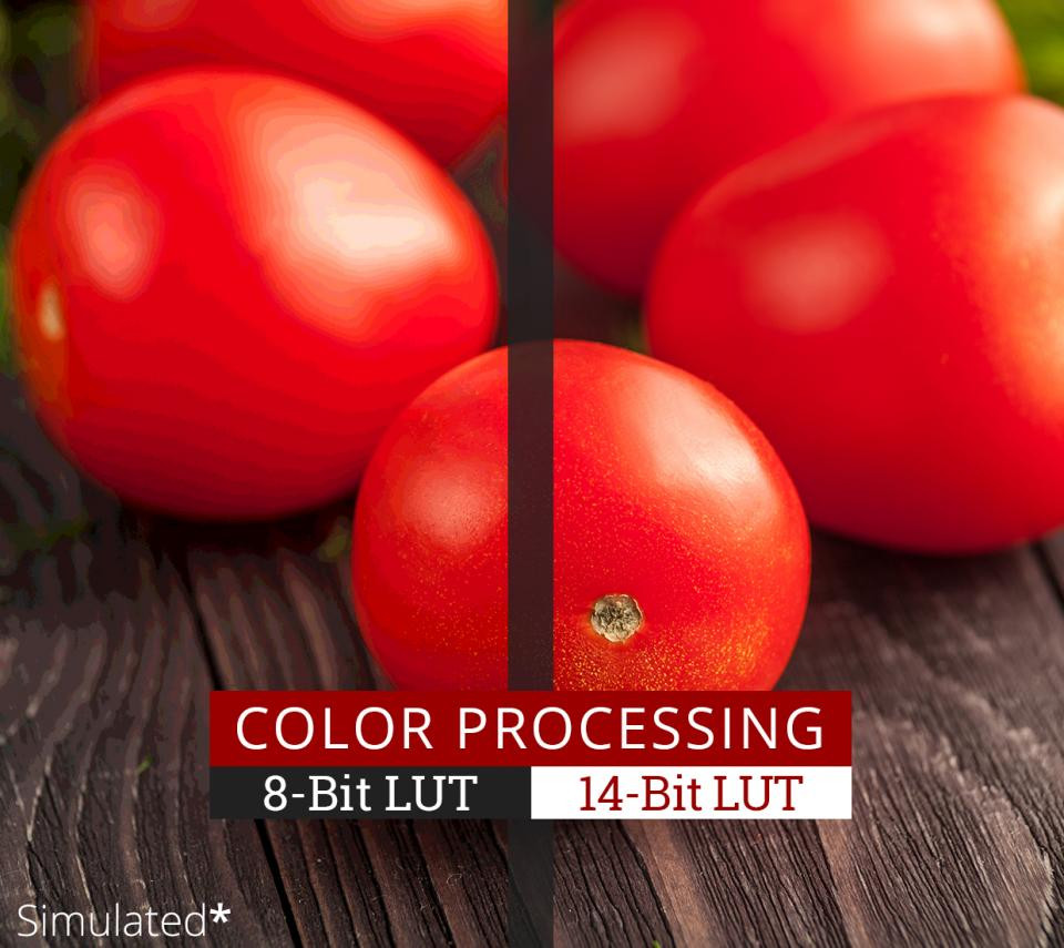 </br>Professional Color Processing Capability