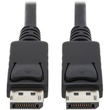 CABLE;DISPLAYPORT;10 FT